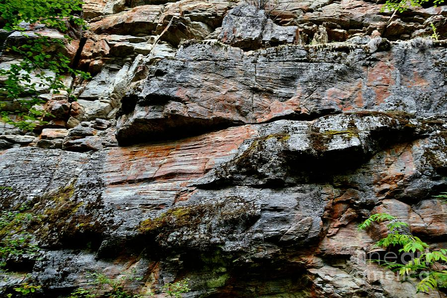 Creek Photograph - Colored Rock Face by Phil Dionne