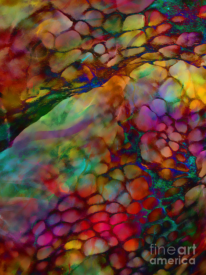 Abstract Digital Art - Colored Tafoni by Klara Acel