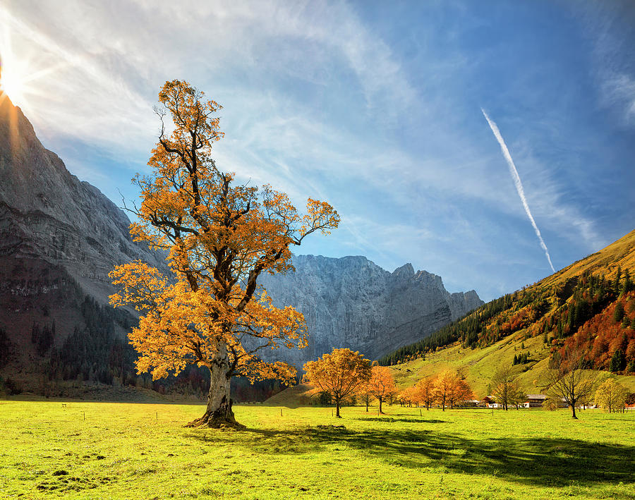 Colorful Autumn At Ahornboden In Photograph by Dietermeyrl