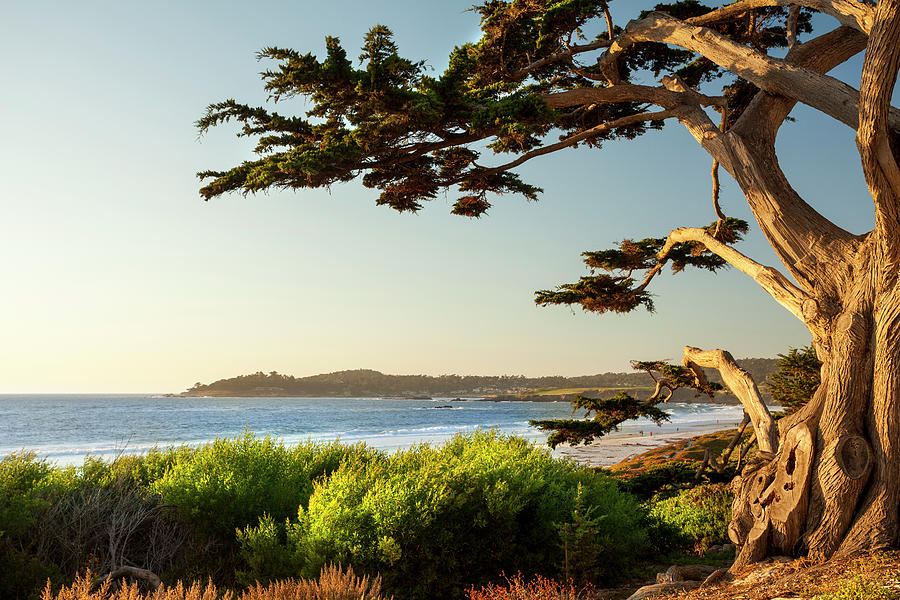 Colorful Beachfront In Carmel-by-the-sea Photograph by Pgiam