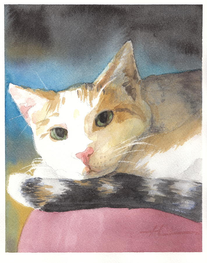Colorful Cat Watercolor Portrait Drawing by Mike Theuer