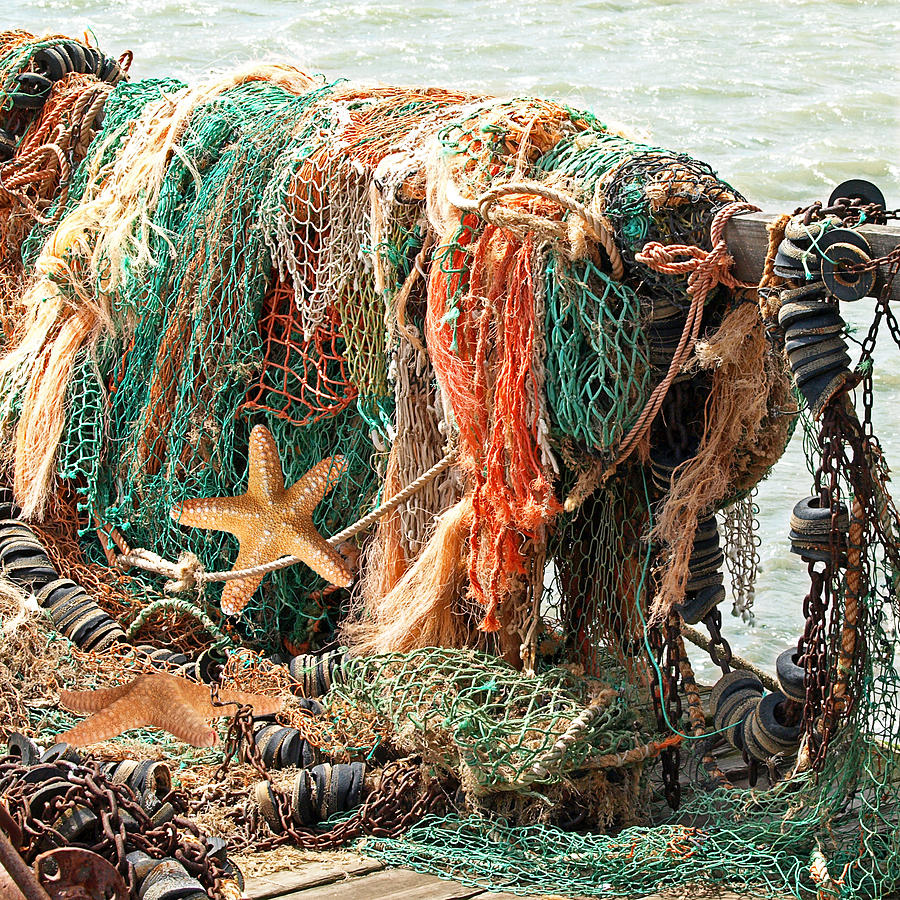 Fishing Net Photograph - Colorful Catch - Starfish In Fishing Nets Square by Gill Billington