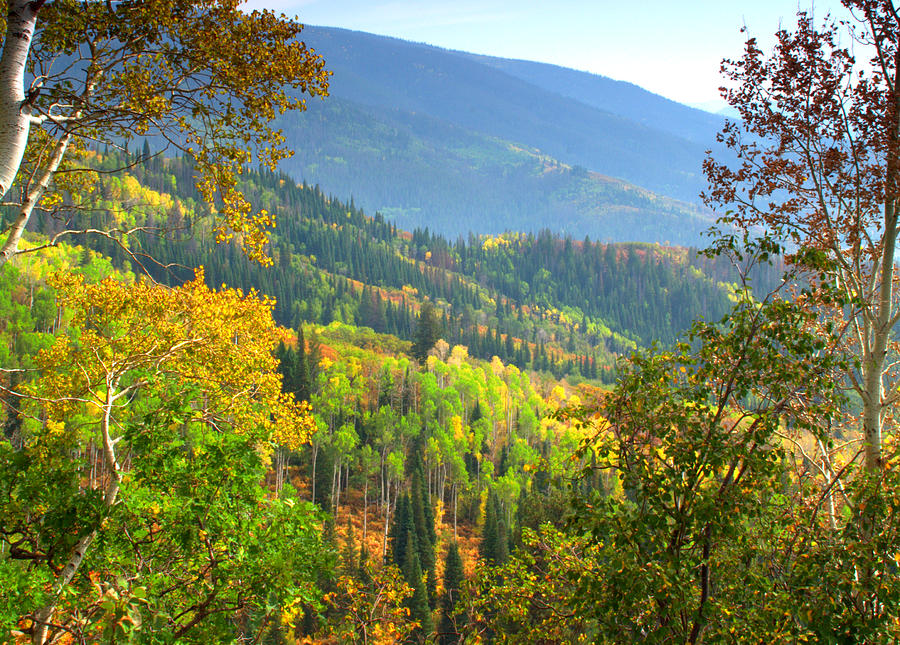 Scenic Photograph - Colorful Colorado by Brian Harig