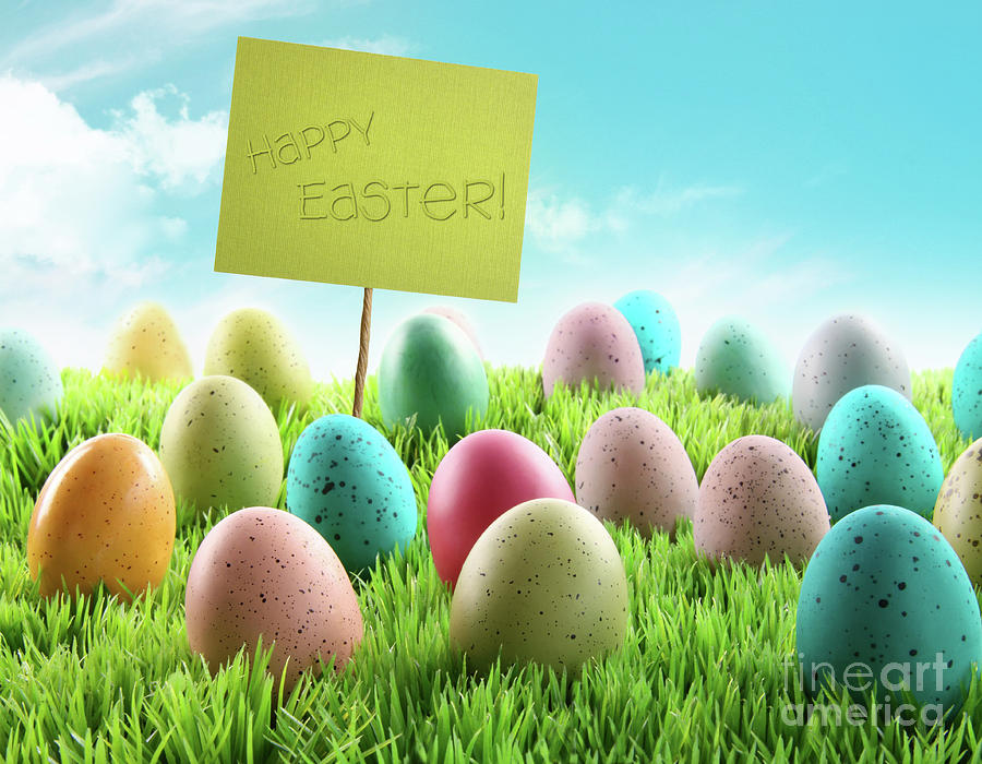 April Photograph - Colorful Easter Eggs With Sign In A Field by Sandra Cunningham