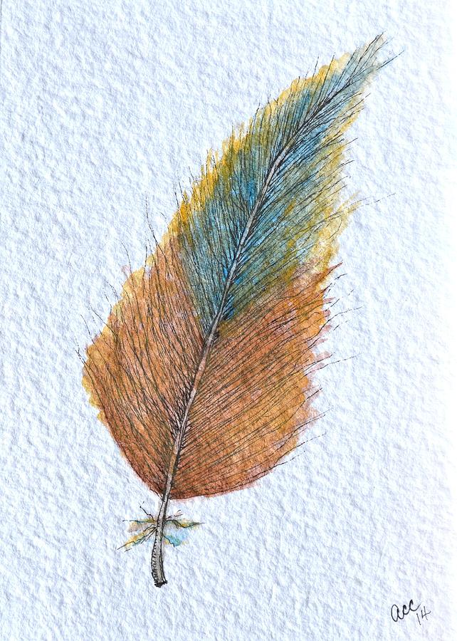 Colorful Feather by Anne Clark