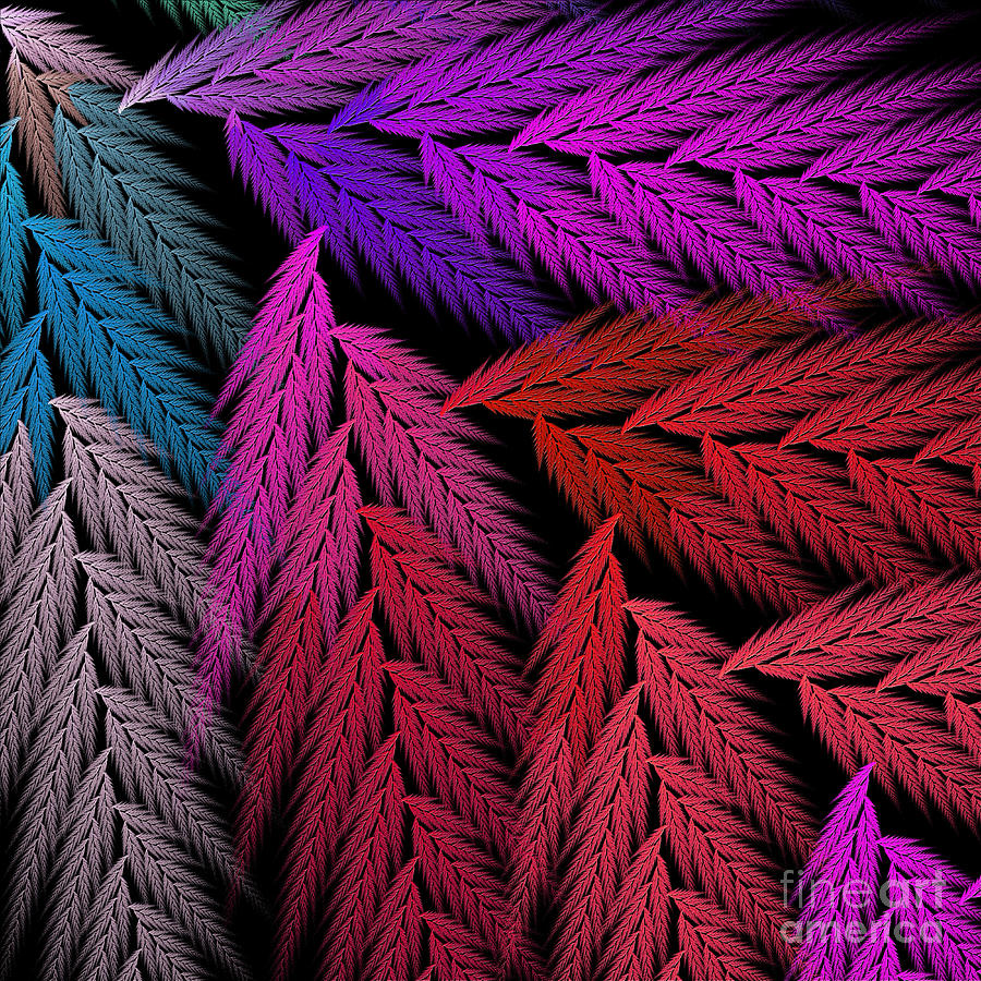 Abstract Digital Art - Colorful Feather Fern - Abstract - Fractal Art - Square - 4 Lr by Andee Design
