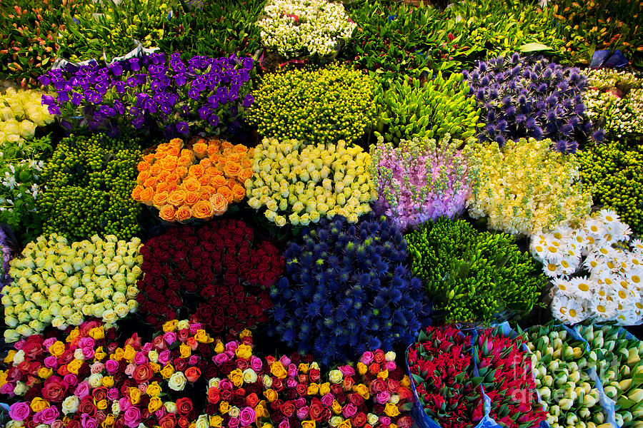 Flower Photograph - Colorful Flowers Background by Michal Bednarek
