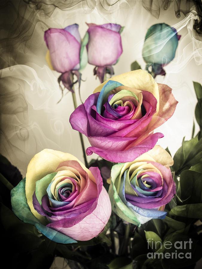 Kaleidoscope Photograph - Colorful Kaleidoscope  Roses by Linda Matlow