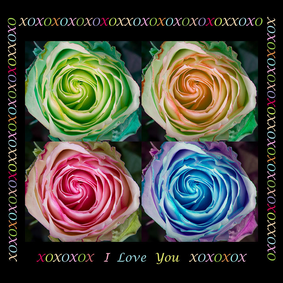 Love Photograph - Colorful Rose Spirals With Love by James BO  Insogna