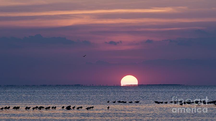 Sunset Photograph - Colorful Sunset Sky by Tammy Smith