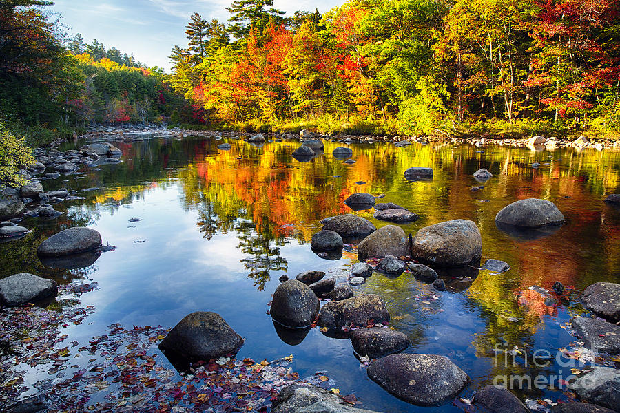 Kancamagus Highway Photograph - Colorful Trees Along The Swift River by George Oze