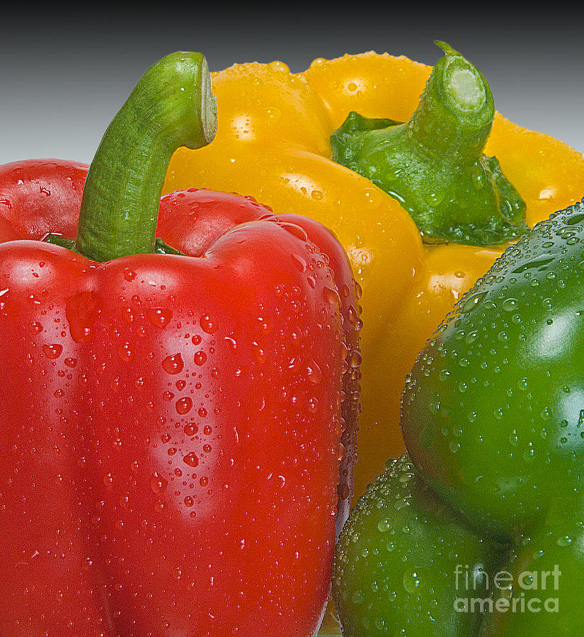 Bell Photograph - Colorful Trio by Susan Candelario