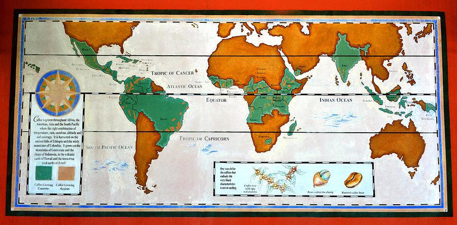World Map Shower Curtains