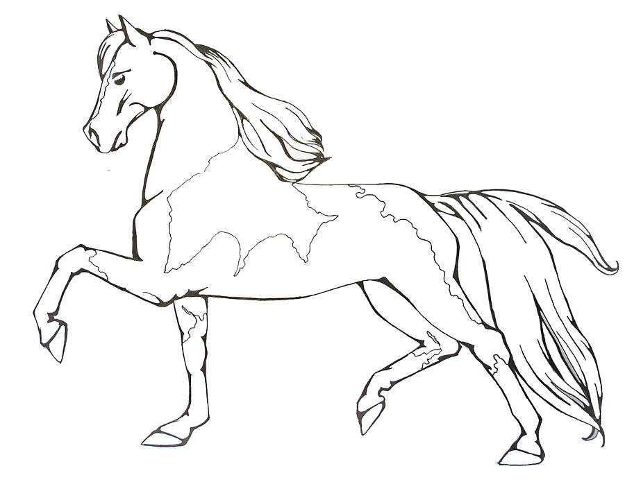 Coloring Page 1 Drawing By Lisa Nadlerrhfineartamerica: Walking Horse Coloring Pages At Baymontmadison.com