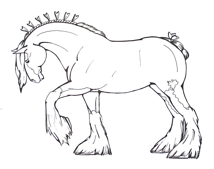 clydesdale coloring pages.html