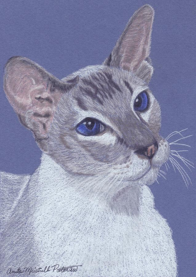 Cat Painting - Colorpoint Vignette by Anita Putman