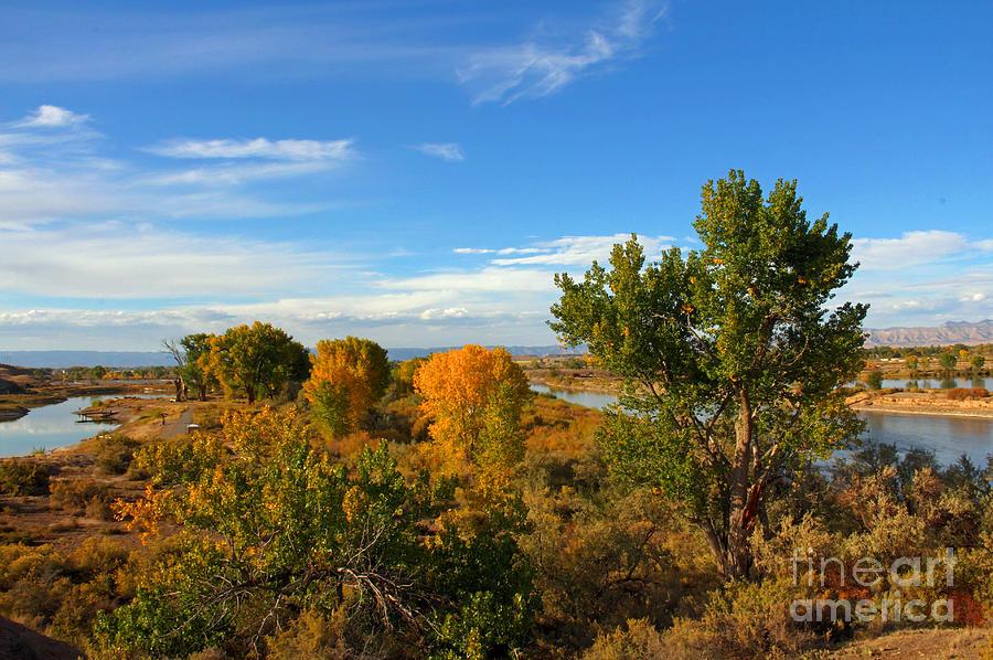 Colorado Photograph - Colors Along The Colorado by Bob Hislop