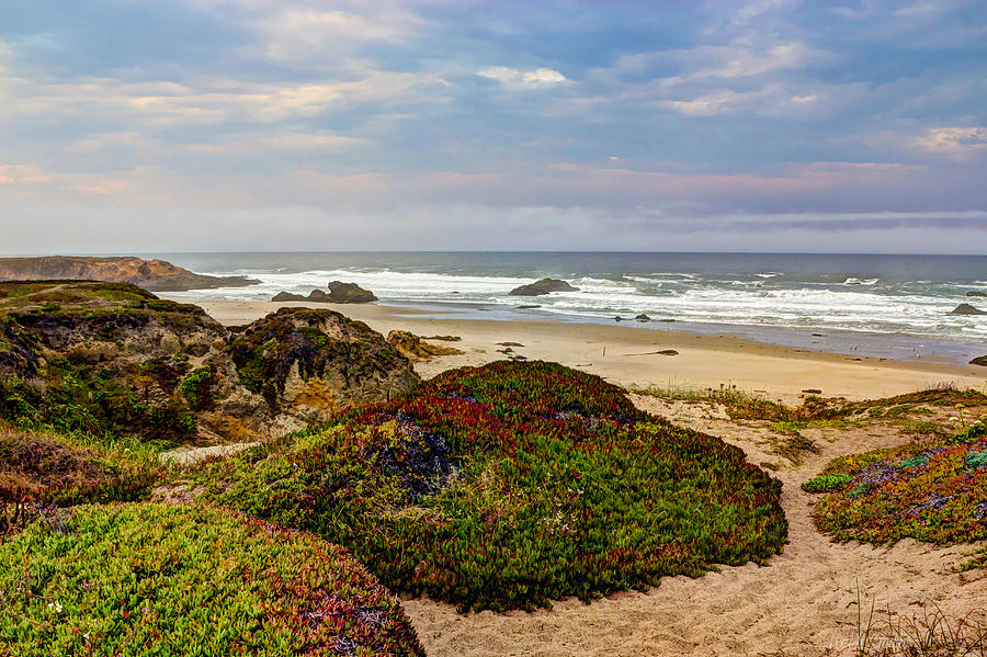 American Photograph - Colors And Texures Of The California Coast by Heidi Smith