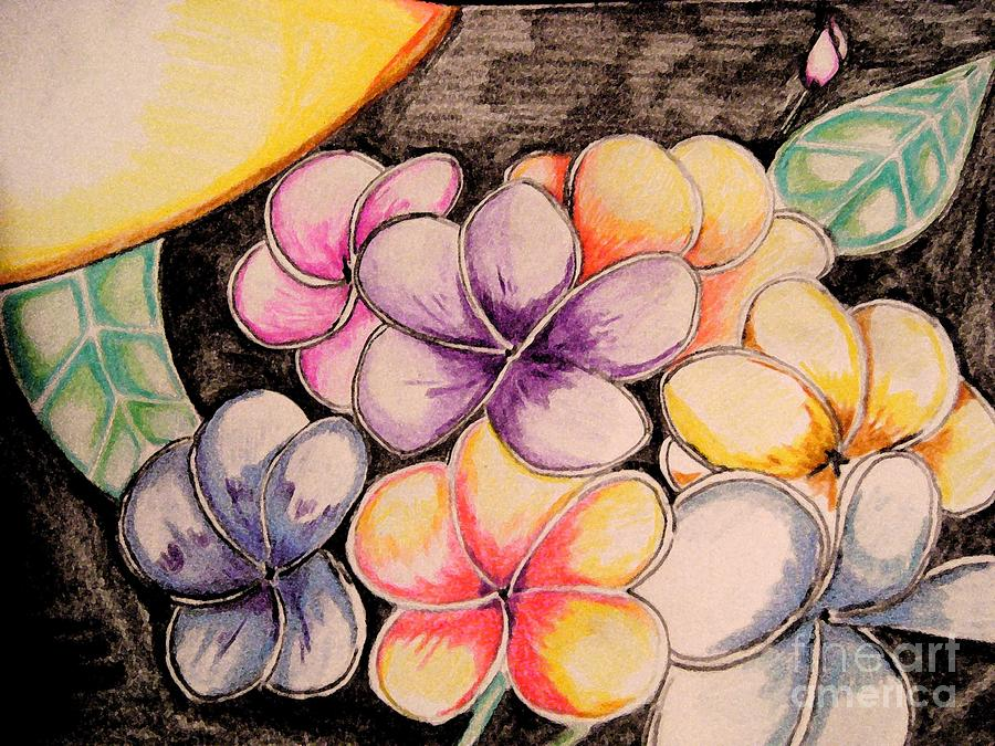 Floral Drawing - Colors Bloom by Sidney Holmes