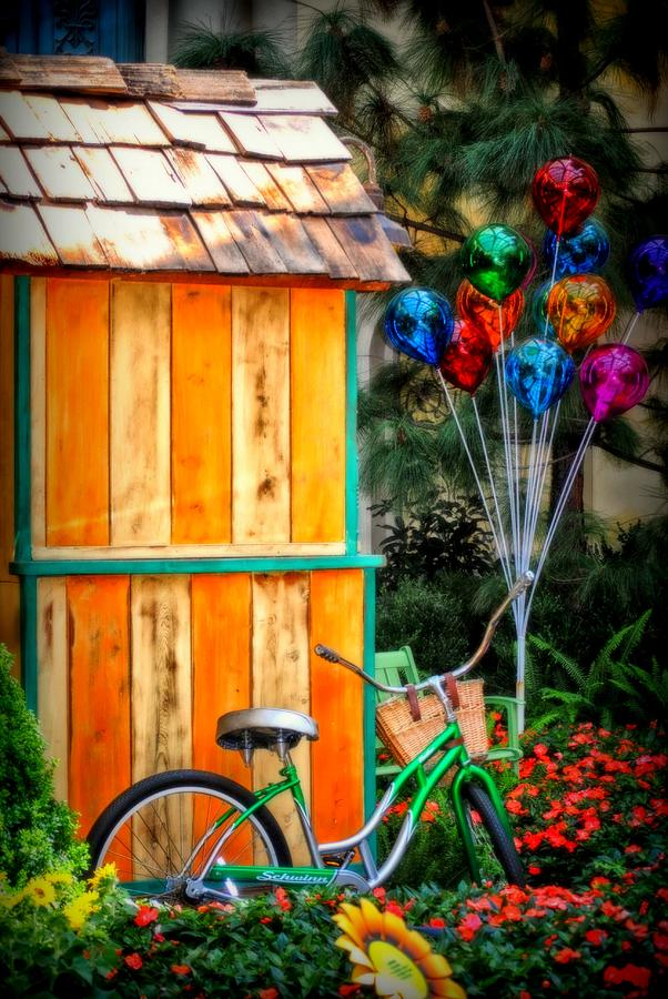 Shack Photograph - Colors Galore by Tricia Marchlik