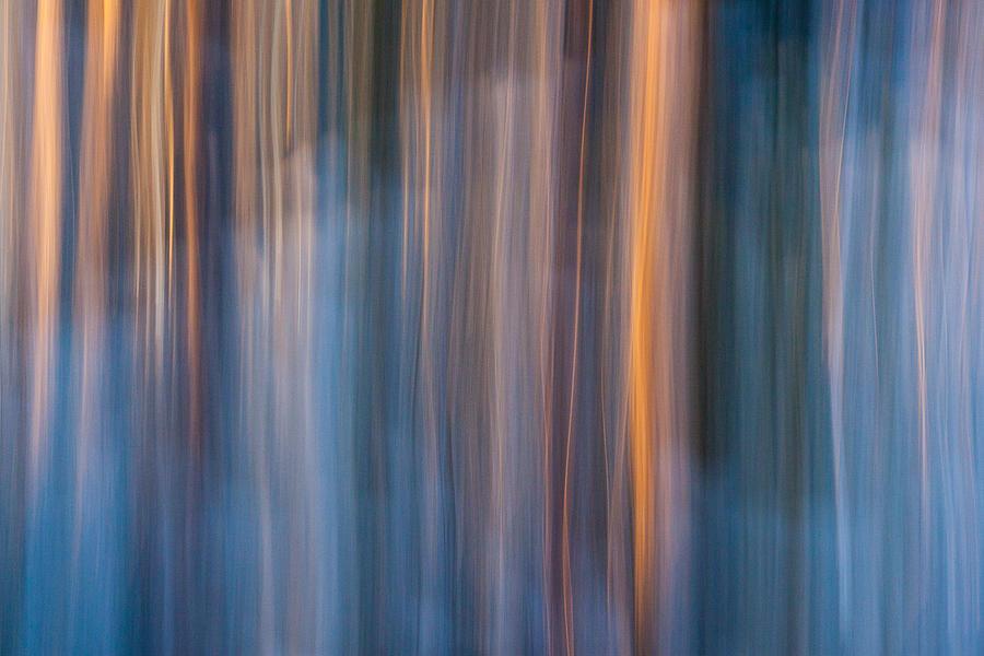 Colors Of Dusk Photograph