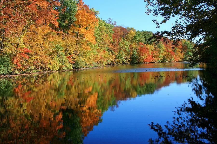 Fall Photograph - Colors Of Fall by Susan  McMenamin