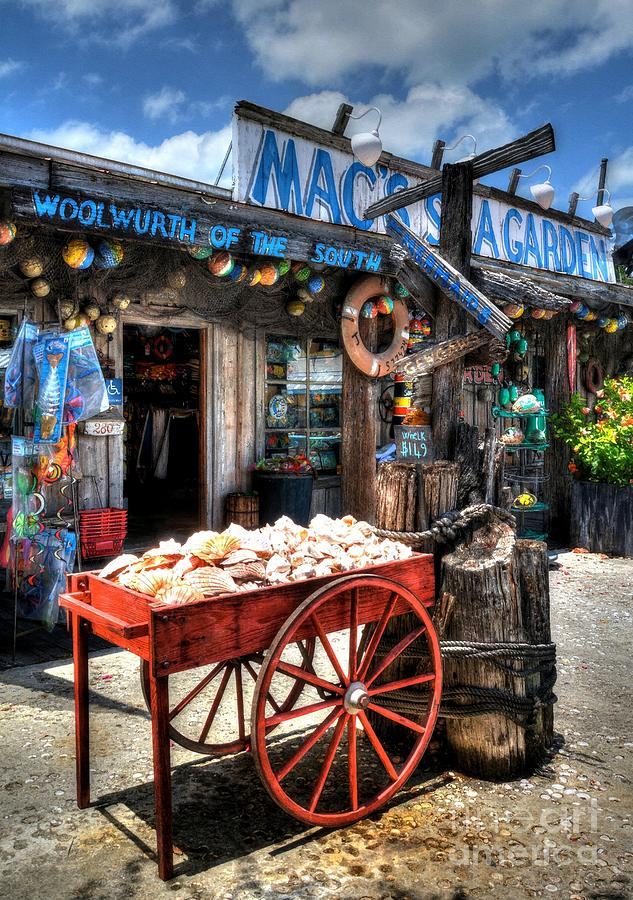 Key West Photograph - Colors Of Key West 3 by Mel Steinhauer