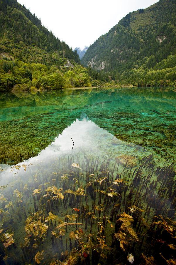 Colors Photograph - Colors Of Tibet Jiuzhaigou by Sundeep Bhardwaj Kullu sundeepkulluDOTcom