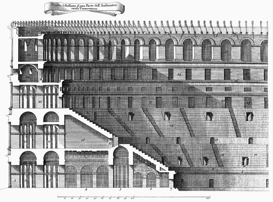 Colosseum: Cross-section Photograph By Granger