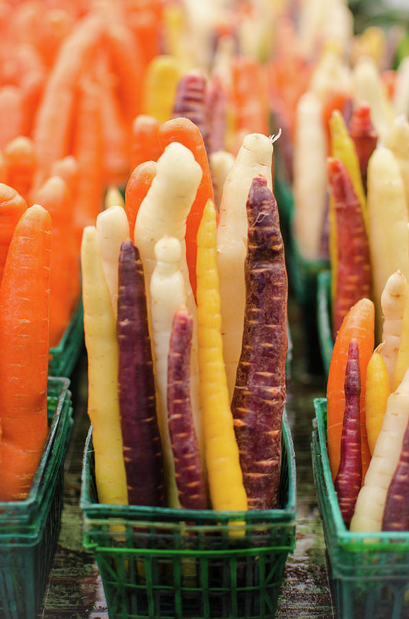 Colourful Carrots Photograph by Danielle Donders