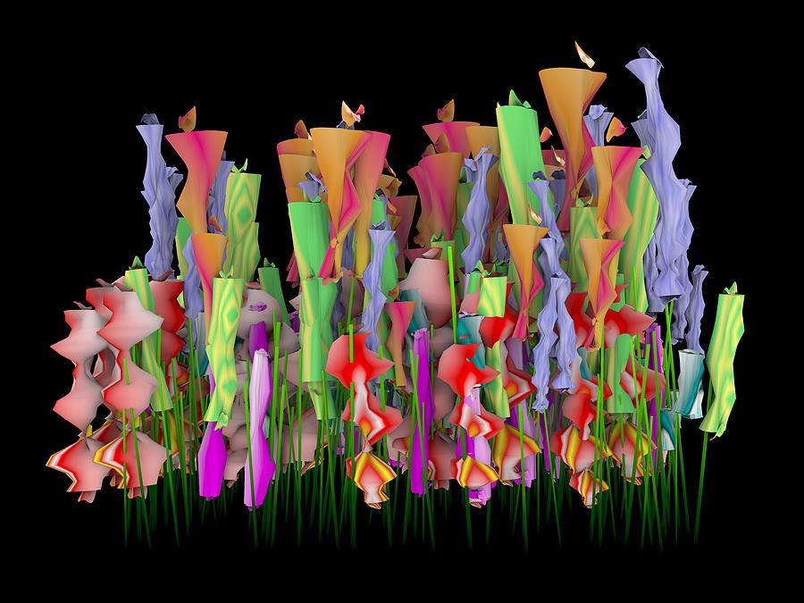 Colour Digital Art - Colourful by Paul McManus