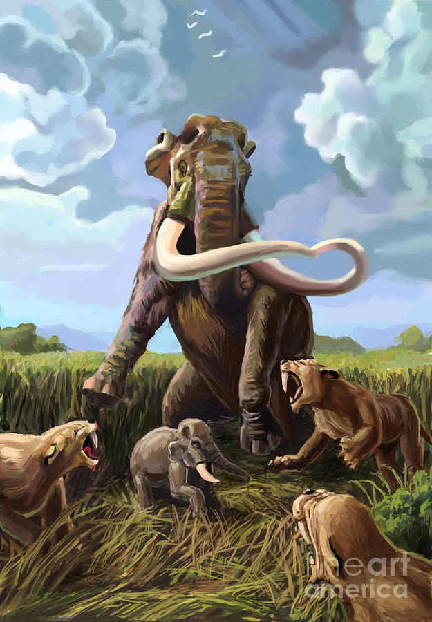 Illustration Photograph - Columbian Mammoth And Saber-toothed Cats by Spencer Sutton