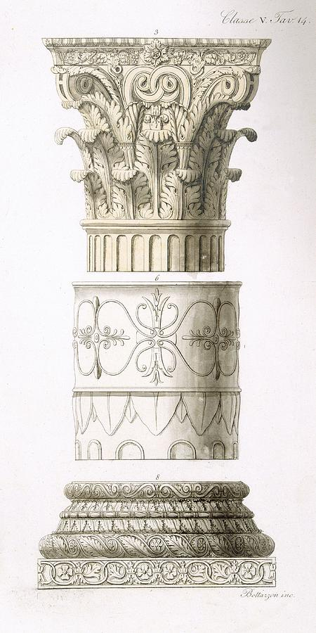 Architecture Drawing - Column And Capital by English School