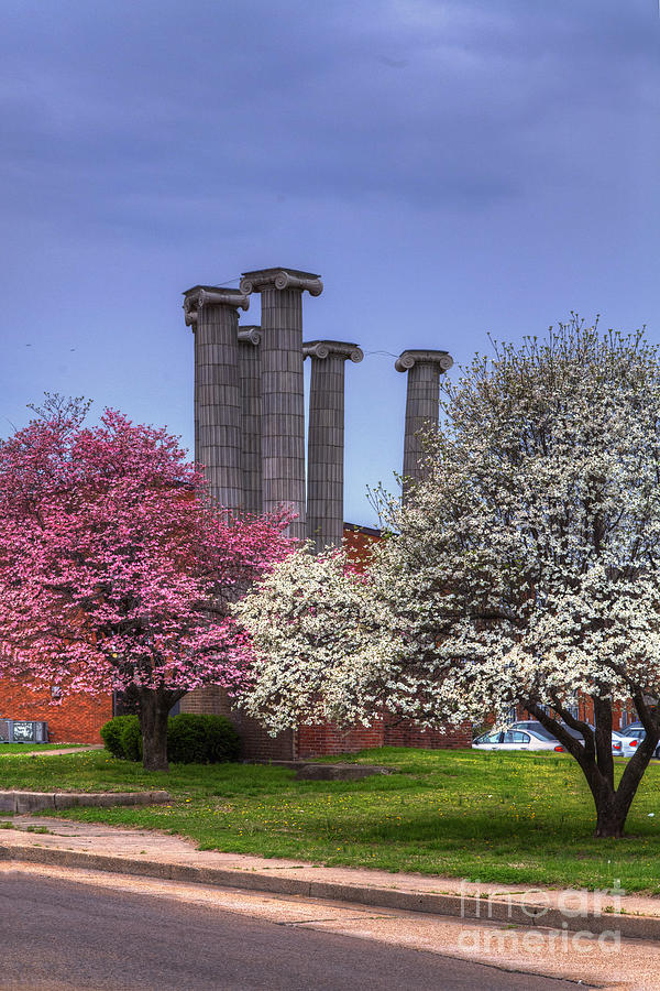 2014 Photograph - Columns And Dogwood Trees by Larry Braun