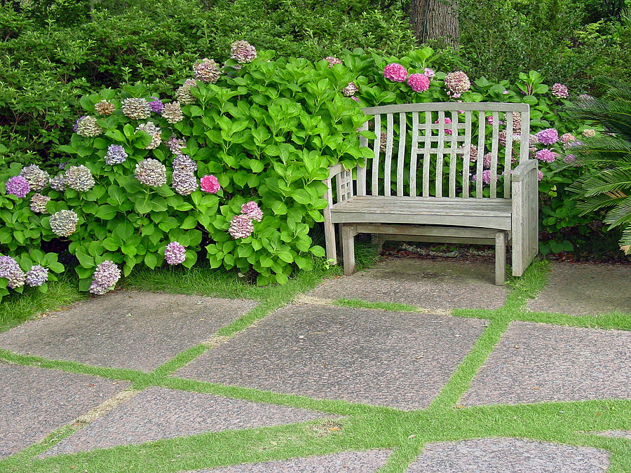 Garden Photograph - Come Sit A Spell by Suzanne Gaff