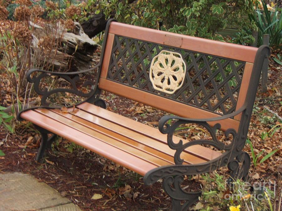 Sit Photograph - Come Sit by Margaret McDermott