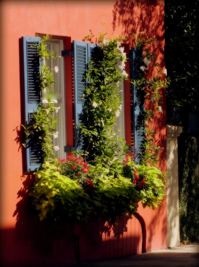 Charleston Photograph - Come To My Window by Karen Wiles