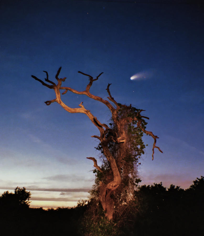Astrophotography Photograph - Comet Catcher. Lake Gentry. by Chris  Kusik