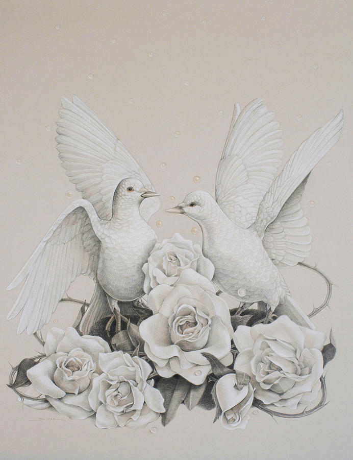 Doves Drawing - Coming Home by Susan Helen Strok