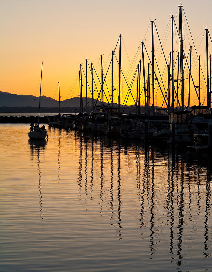 Sailboat Photograph - Coming In by Mike Reid