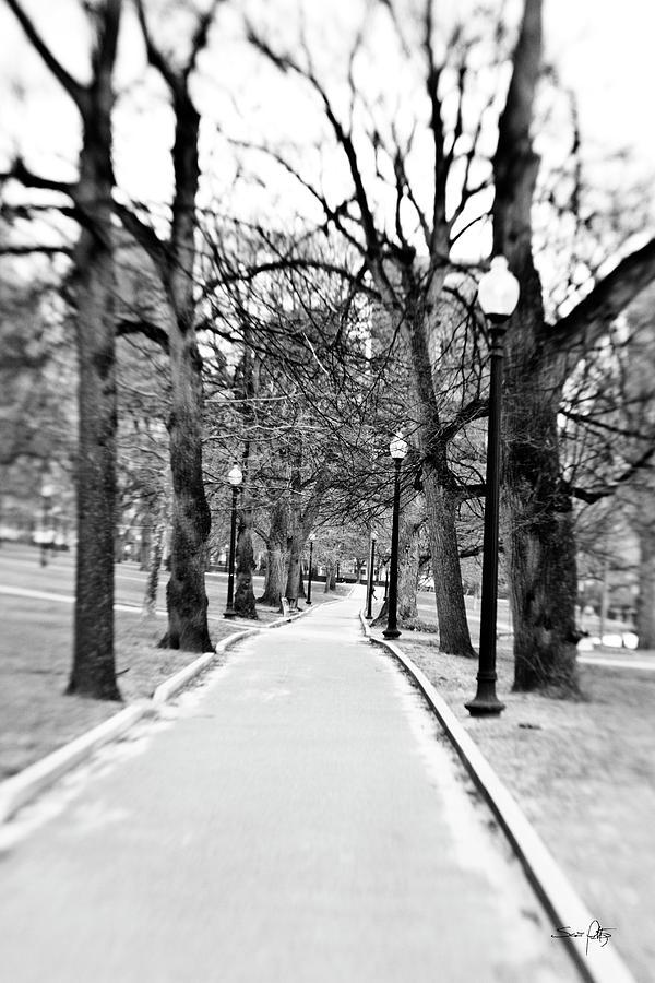 Black & White Photograph - Commons Park Pathway by Scott Pellegrin