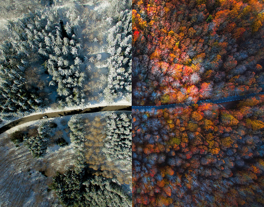 Comparison picture taken from drone with half autumn and half winter landscape. Photograph by Artur Debat
