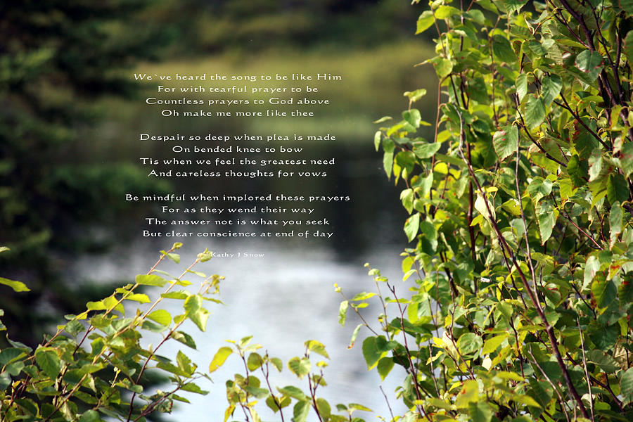 Poetry Photograph - Concience by Kathy J Snow