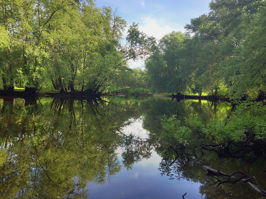 Concord Photograph - Concord River by Nancy Landry