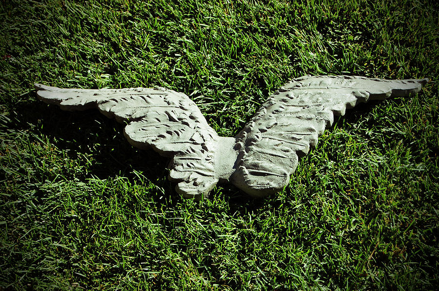Concrete Photograph - Concrete Angel by Holly Blunkall
