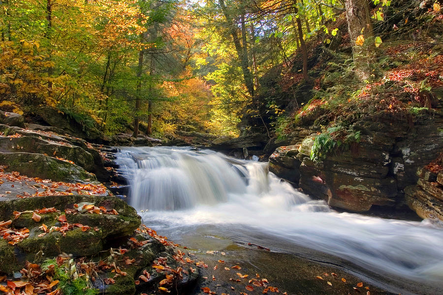 Autumn Photograph - Conestoga Falls On Kitchen Creek In The Fall by Gene Walls
