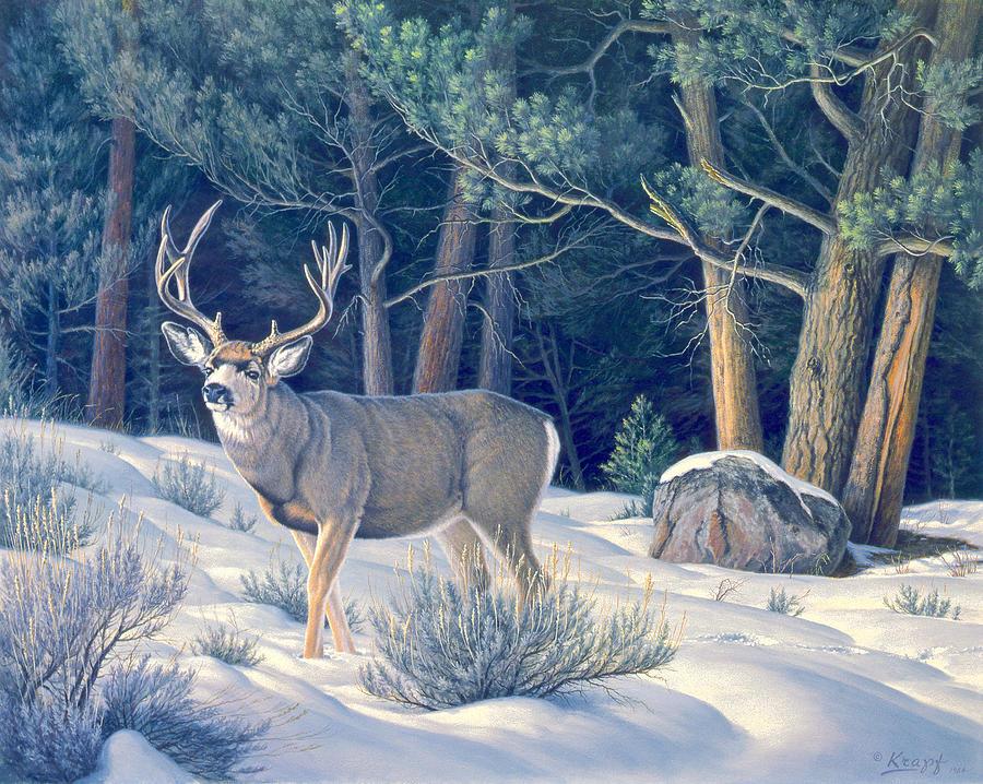 Wildlife Painting - Confrontation - Mule Deer Buck by Paul Krapf