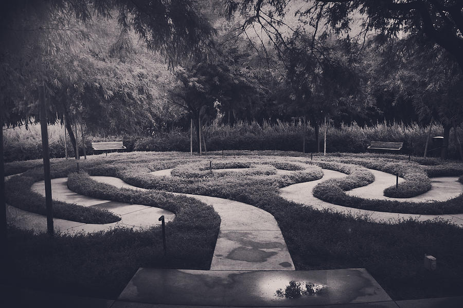 Labyrinths Photograph - Confusion by Laurie Search