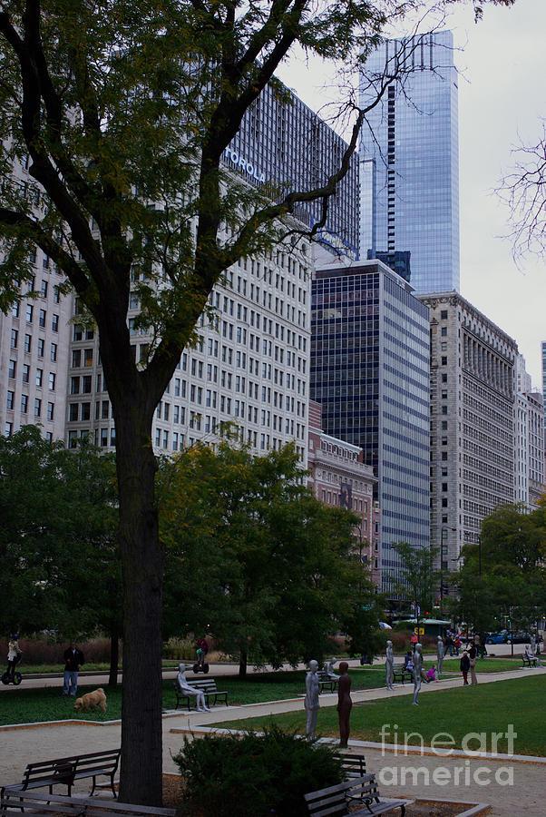 Grant Park Chicago Photograph