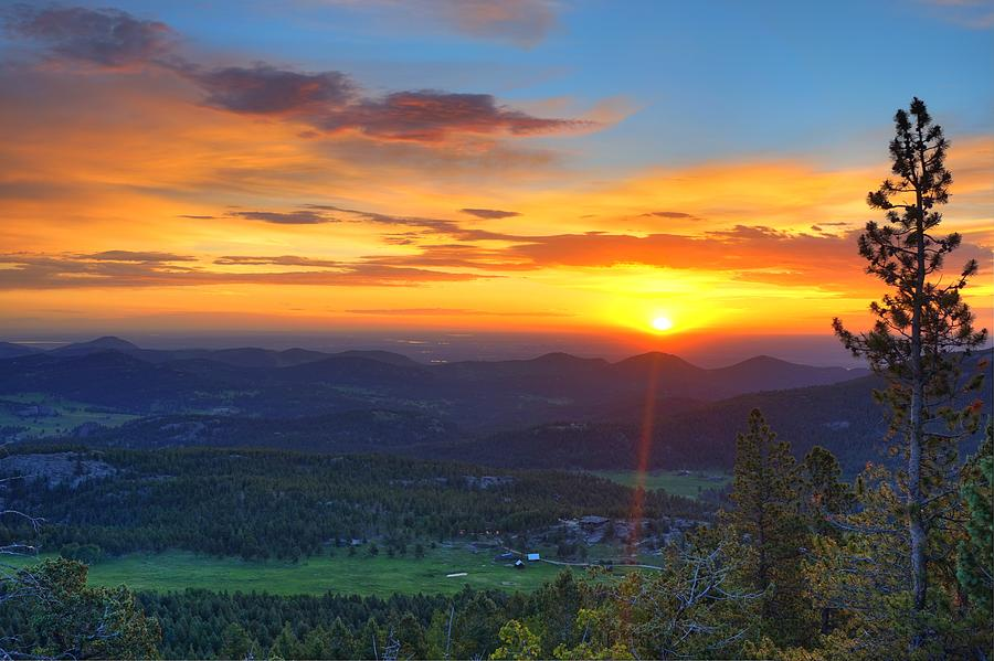 Conifer Photograph - Conifer Sunrise by David Ross
